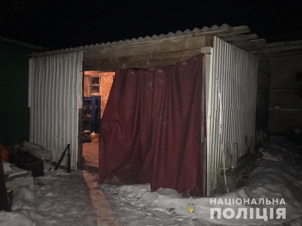Замах на вбивство на Київщині: підліток бив молодшу сестру пательнею.