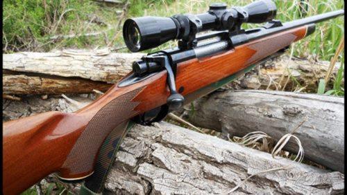 На Житомирщині лісник пострілом з рушниці поранив дитину